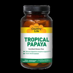 Tropical Papaya